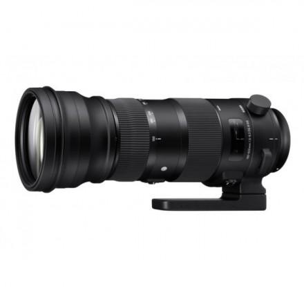 Sigma 150/600 F-5-6.3 DG OS HSM Contemporary